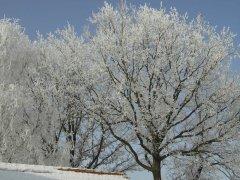 Weihnachten-2005-Winterlandschaft-067.jpg